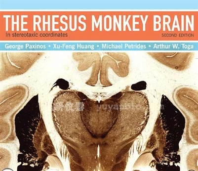 猴子脑图谱 rhesus monkey brain